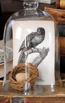 beestje in glazen stolp