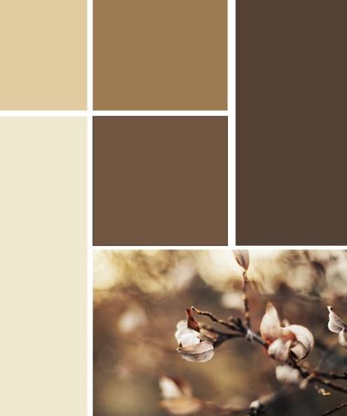 Kleuren woning kiezen 2015 - Interieur ideeen