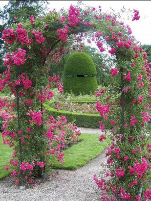 rozenboog in tuin idee