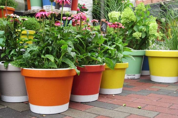 tuin ideeen gekleurde potten
